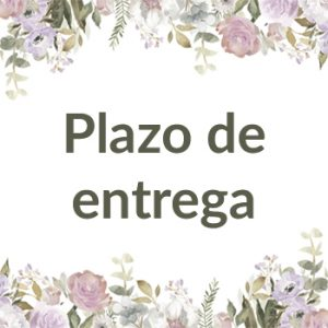Plazo de entrega