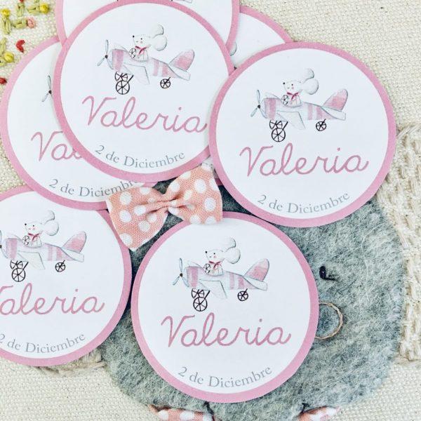 Etiqueta pegatina personalizada Alegna Secret avion rosa